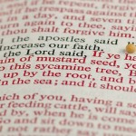 Scripture on Faith