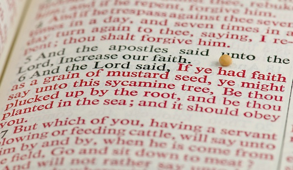 Scripture on Faith - Bible with a Mustard Seed on it