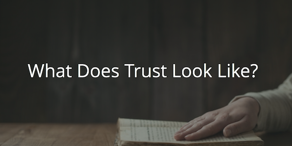 What Does Trust Look Like?
